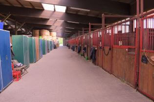 Die breite Stallgasse in der Reithalle bietet ausreichend Platz.